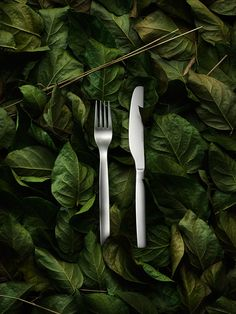 Lotta Agaton - again, beautiful styling Conceptual Photography, Food Photography Styling, Still Life Photography, Food Styling, Product Photography, Food C, Growing Greens, Still Life Photos, Different Vegetables