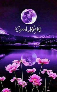Saraseragmail.com.. Buona Notte.