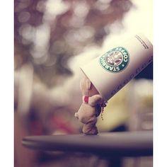 Starbucks~