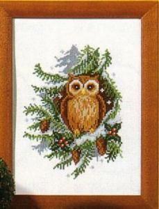 (OP=OP) Uil in dennenboom