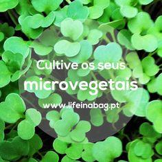 Microvegetais Rúcula Life in a bag