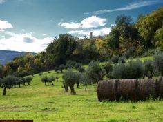 Guida turistica delle marche: provincia di Macerata marche, landscape, nature, marche region, travel, italy