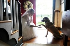 When I get married I want a picture like this with my dog and I. Except probably outside.