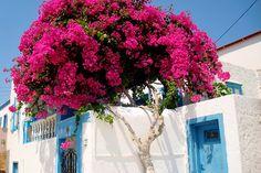 greek islands | Tumblr