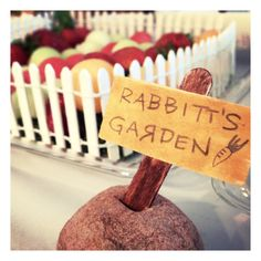 Rabbit's Garden fruit and vegetable trays. Hand made sign. Winnie the Pooh Birthday Party. By Big Moosie Studio.