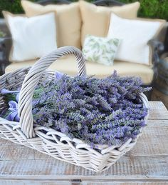 Lavender in a basket. Photograph by Kate of Centsational Girl.