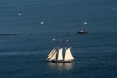 Yacht America off San Diego Bay