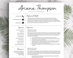Creative Resume Template Resume For Word And Pages 1 2 U0026