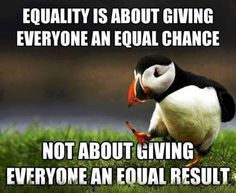 Equality  |  Everyone deserves an equal CHANCE, but the rest is up to them. It is not humanly possible to give everyone an equal RESULT.