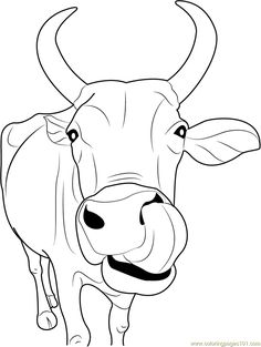 Free Printable Cow Coloring Pages For Kids | nativity animals ...