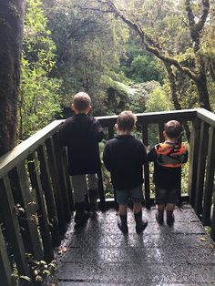 Family adventures in New Zealand's great outdoors