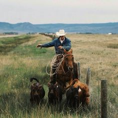 Any thing western. Cowboys, cowgirls, horses and anything else I like. Cowboy Horse, Cowboy And Cowgirl, Cowboy Ranch, Westerns, Western Photography, Hunting Photography, Real Cowboys, Rodeo Cowboys, Hot Cowboys