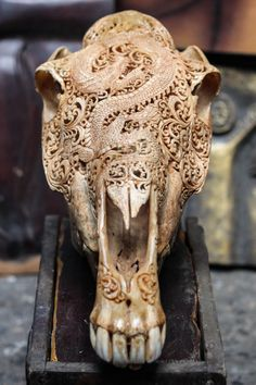Beautifully Hand Carved Horse Skull Artwork    The Perfect Home, Office, Patio, or Bar Decoration. This Is a Real Skull & Real Horns - Not an Imitation.   About Us:    This Authentic Horse Skull is hand carved by Balinese Master Artisan Carvers. It takes our Master carvers days to complete this One-Of-A-Kind Mystic Dragon design (as shown above). Every Skull imported from Java is slightly different because no two Skulls are the same. The hand carving also differs by each individual artist...