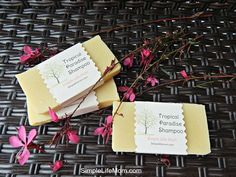 Tropic Paradise Shampoo Bar No Tree Nuts by SimpleLifeMom.  I LOVE this scent! Lemon, Eucalyptus, and Neroli essential oils.