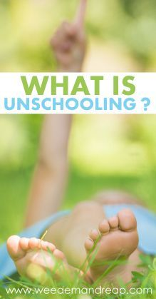 What is Unschooling? - Weed'em & Reap