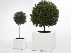 Blumenkasten aus Glasfaser ALEA by Extremis | Design Dirk Wynants