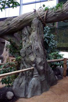 Zoo habitats - Zoo habitats