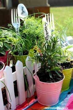 Gift ideas for spring | Nspired Style, Herbs, Gift Ideas, Gardening