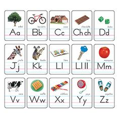 Cartas del abecedario con fotos Manuscrito Zaner-Bloser (SP) Bulletin Board Set…