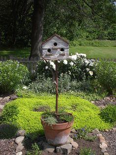 Birdhouse in a pot!