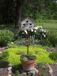Birdhouse mounted on pole in a planted pot.