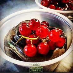 Chocolate Tofu Mousse with Red Currant #weightloss #weightlosshelp #weightlosstips #fitness #fit #wegihtlosstransformation #everydaydelivery #cleaneating #motivation #fatloss #diet #dietplans #lemenev #diet #healthy #life #style #burncalories #lemenev  #lemenevdiet #unique #exclusive #delicious #portioncontrol #lowfat #lowcarb by lemenev