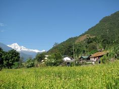 Dzongu