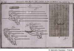 FRANCESCO GRISELINI, Dizionario delle Arti e de' mestieri Venezia, 1768 - 1778. Tav. 24 - Formazione delle Maglie delle Calzette di Seta sul Mestiere.