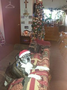 Merry Christmas, Teeny!!