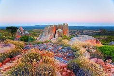 Gawler Ranges South Australia Getty Image Got up at to catch the pre dawn light on these rocks! Tasmania, Australia Landscape, Adelaide South Australia, Wanderlust, To Infinity And Beyond, Beach Trip, Beach Travel, Hawaii Travel, Australia Travel