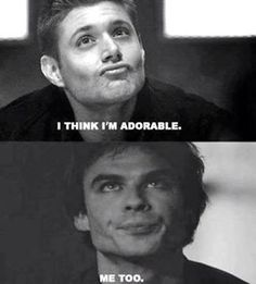 Dean VS Damon from Vampire Diaries, I'm sure that they would get along well !