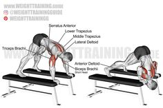 Exercise: Pike press. Target muscle: Anterior Deltoid. Synergists: Upper Pectoralis Major, Triceps Brachii, Lateral Deltoid, Middle and Lower Trapezius, Serratus Anterior. Dynamic stabilizer: Biceps Brachii (short head only). Mechanics: Compound. Force: Push. Best Shoulder Workout, Shoulder Exercises, Biceps, Weight Training, Body Weight, Muscles, Target, Arms