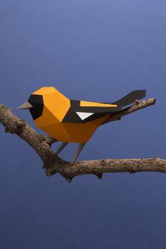 Colección Aves Argentinas - aves para armar on Behance