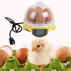 7 Eggs Digital Egg Incubator Poultry Hatcher Chicken Egg Incubator 110V 30W