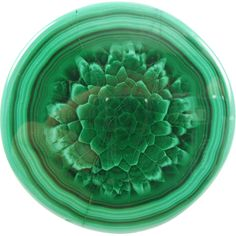 "Malachite stalactite cross section, ""Dahlia"" / Africa"