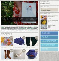 Web Design Bowerbird