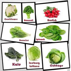 14 Vegetable Cards Ideas Fruit Names Fruit Vegetables