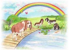gedicht de regenboogbrug. een gedicht voor steun en troost