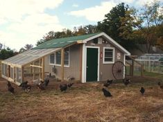 Very nice large chicken coop - has 3 interior rooms, so has space to separate flock. Has two runs, one on each side of the coop. May be perfect for chickens & ducks to live Cheap Chicken Coops, Portable Chicken Coop, Chicken Coup, Best Chicken Coop, Backyard Chicken Coops, Building A Chicken Coop, Chickens Backyard, Chicken Runs, Large Chicken Coop Plans
