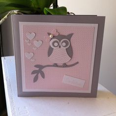 "Announce Birth & Envelope Collection ""Little OWL"" - card 16th Birthday Card, Kids Birthday Cards, Owl Card, Owl Punch, Little Owl, Baby Scrapbook, Stamping Up, Baby Cards, Mini Albums"