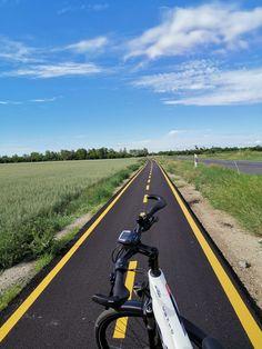 Bratislava, Country Roads, Sport, Sailing, Swim, Public Bathing, Biking, Deporte, Sports