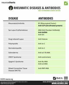 Autoantibodies for Rheumatic Diseases Medical Students, Nursing Students, Np School, School Tips, Nursing School Notes, Nursing Schools, Medical School, Rheumatic Diseases, Medical Laboratory