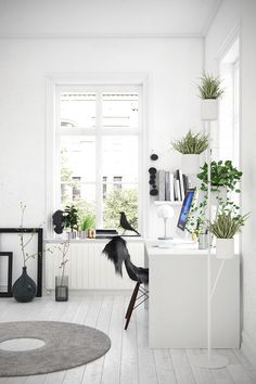 French windows and clean spaces highlight tiered pot plants, fur-laden chairs and woollen crop-ring mats, in this fresh-looking workspace.