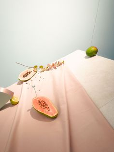 oliver shwartzwald still life photography, beautiful and strange.