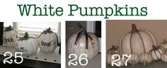 Pumpkin Patch at Oopsey Daisy! | Oopsey Daisy