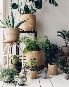 Stunning African natural sisal woven baskets, handwoven by womens' co-operatives. These beautiful fair-trade storage baskets for the home are made using traditional techniques. diy home plants Natural Woven Basket Plantas Indoor, Decoration Plante, Home Decoration, Deco Nature, Basket Planters, Plant Basket, Green Basket, Wire Basket, Succulent Planters
