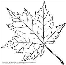 dibujo de una hoja de otoño para imprimir y colorear   hojas de otoño   pinterest