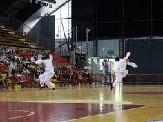 #Perugia con la scuola Tianlong del maestro Edoardo Antolini torna il Kung Fu al Palaevangelisti - 04.06.2015
