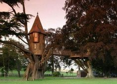 grown up tree houses