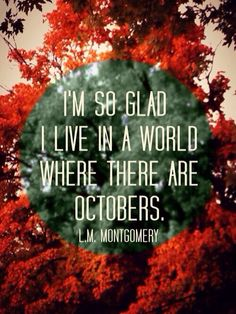 hey fall. I've missed you friend :)